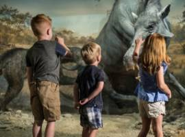 Top Eleven Museums in Branson