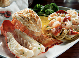 Restaurant Tip: Delicious Seafood Options