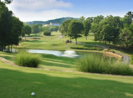 Spend the Day Golfing in Branson